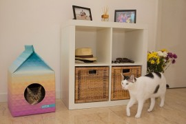 Eco-Friendly Pet Playhouse With Scandinavian Style!