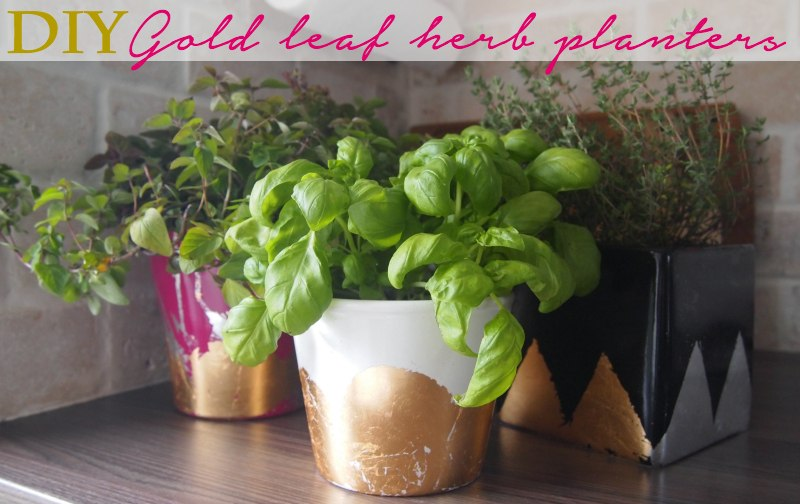 DIY Gold Leaf Herb Planter Idea DIY Gold & Silver Foil Herb Planters