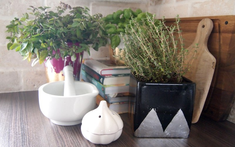 Give your kitchen some herbal magic with Chic DIY Planters