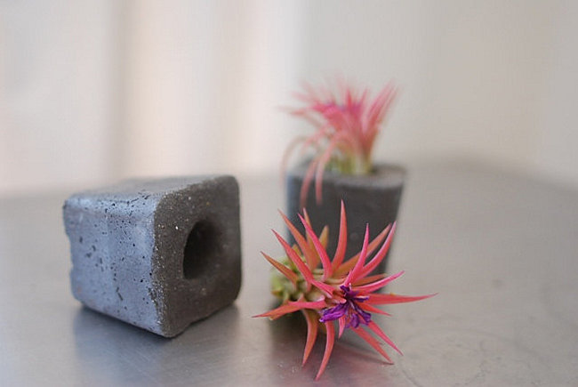 Set of 2 concrete air plant containers from Anson Design