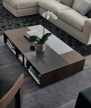 Stylish Rectangular coffee table with open compartments