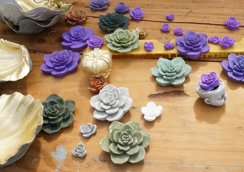 Succulents by Richard Taylor