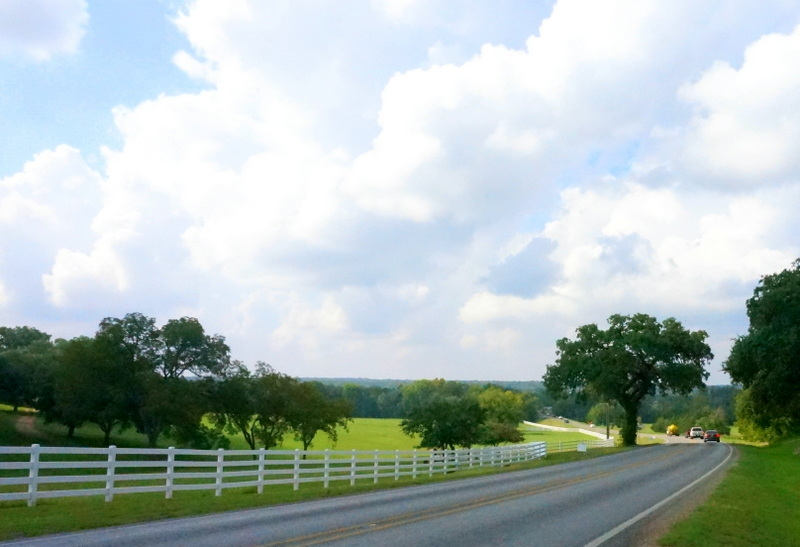 The drive to Round Top, Texas