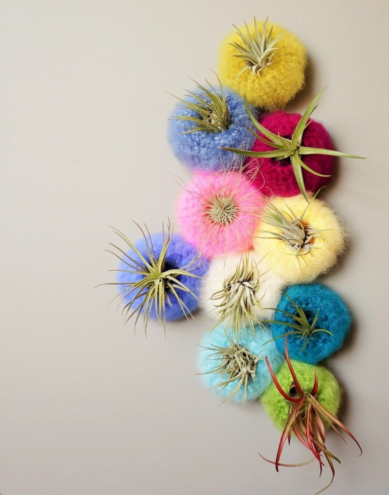 Yarn air plant pods from Lemon Cucullu