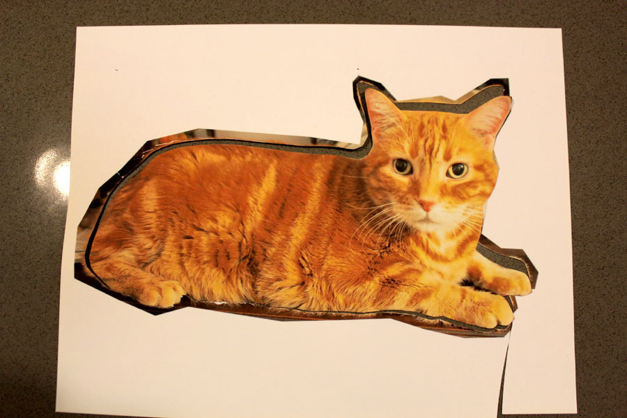 Custom Cat Pillow Diy Tutorial
