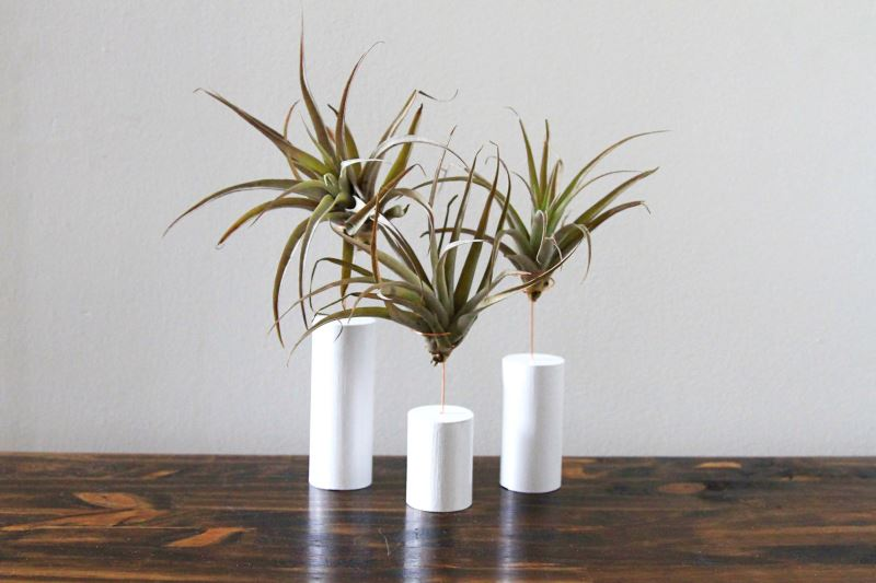 Air plant stands from Gems of the Soil