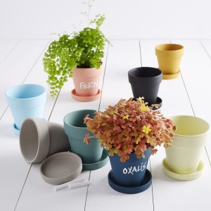 Chalkboard planter gifts from West Elm