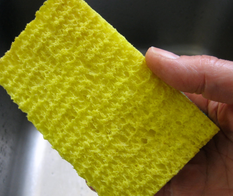 Clean yellow sponge
