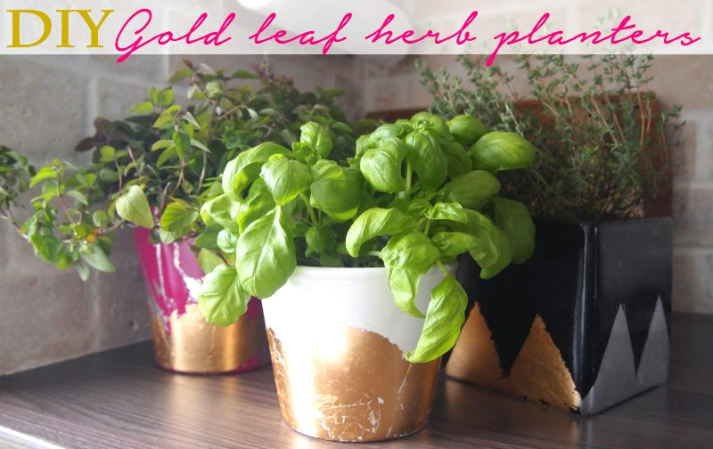 DIY Gold Leaf Planter