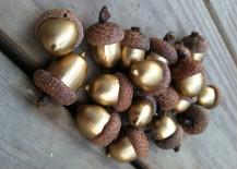 Gold-Acorns-217x155