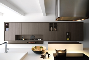 Sophisticated modern kitchen in dark tones