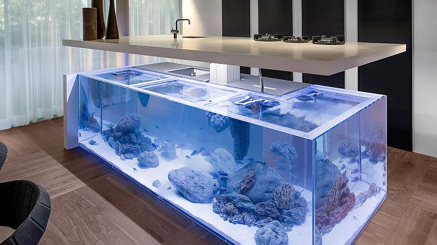 View in gallery Amazing Aquarium Kitchen Island brings ocean to the kitchen!  [Design: Robert Kolenik]