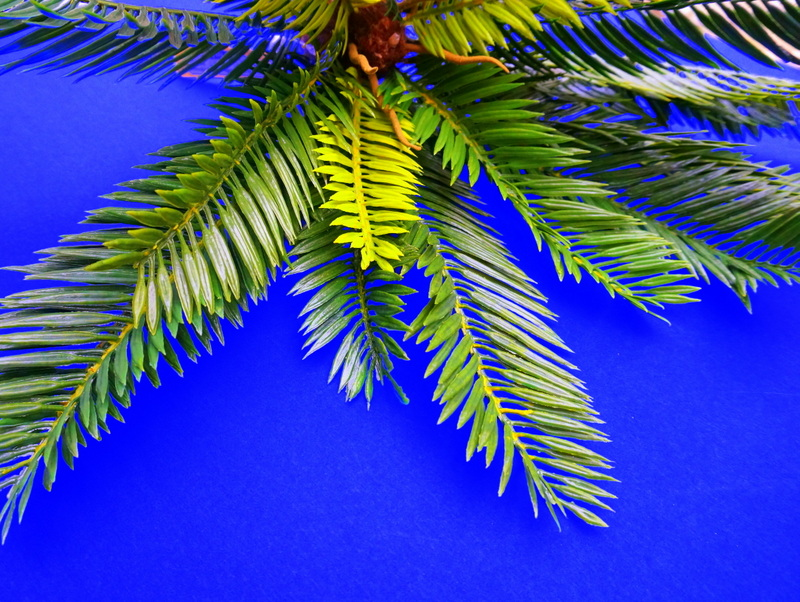 Faux tropical greenery is the starting point of this DIY project