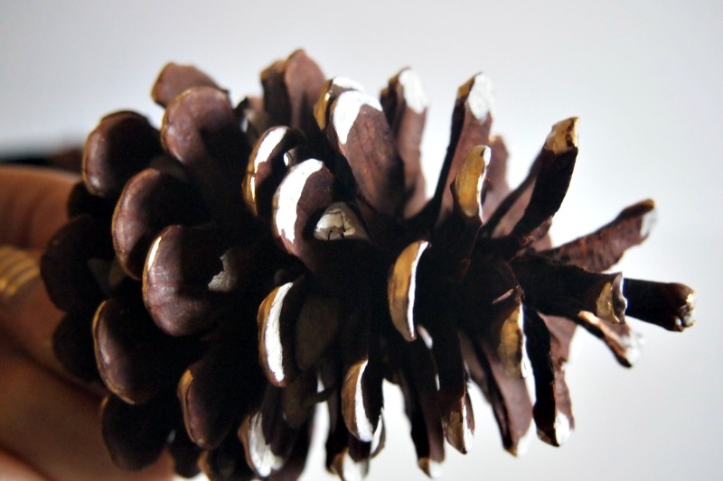 painted pine cone gold and white