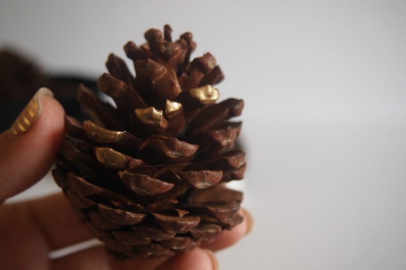 painted pine cone process