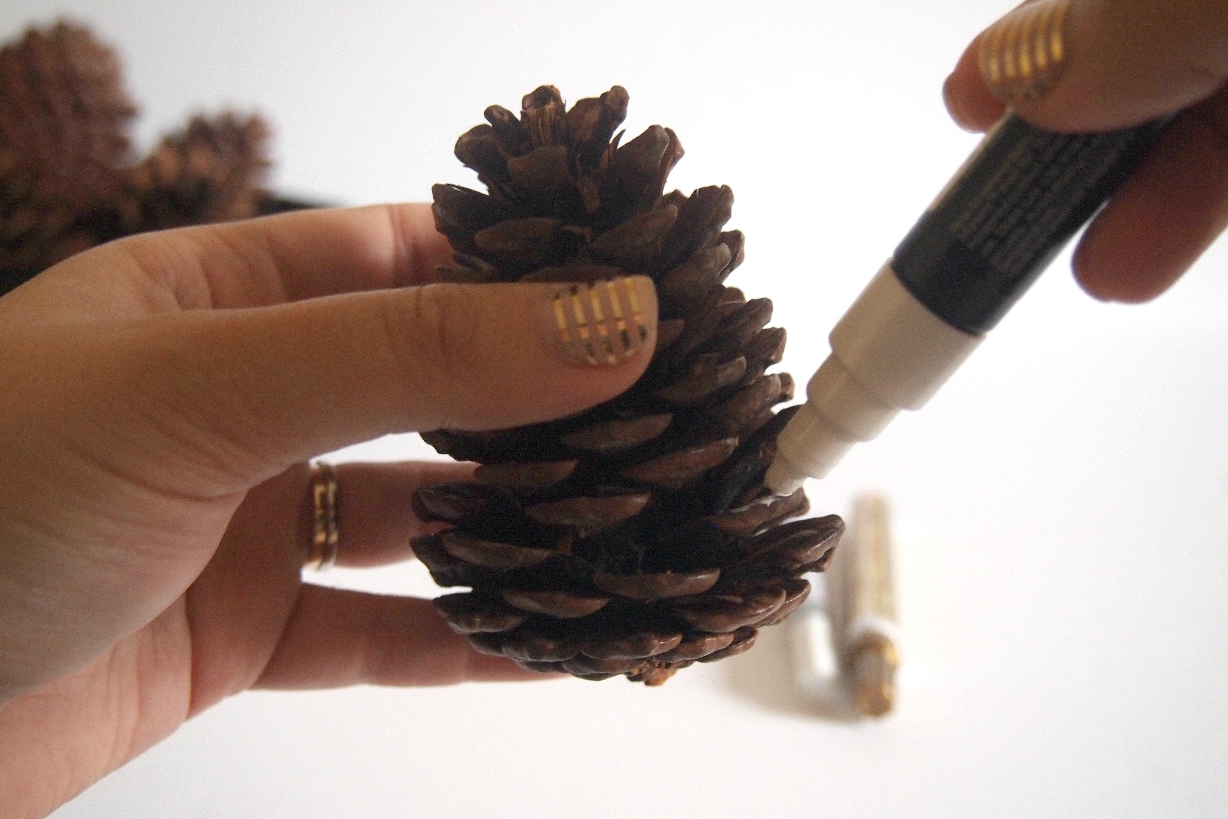 painting pine cone white