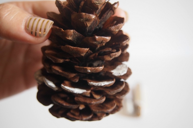 process of painting a pine cone white