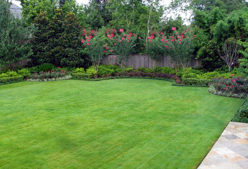 Image result for outdoor lawn