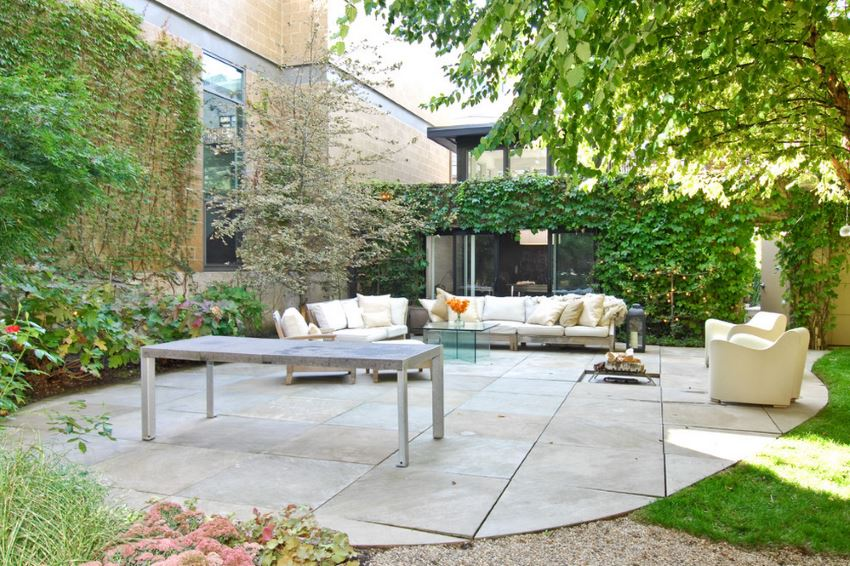 Contemporary patio with trees and vines