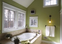 Elegant-use-of-green-inside-the-traditional-bathroom-217x155