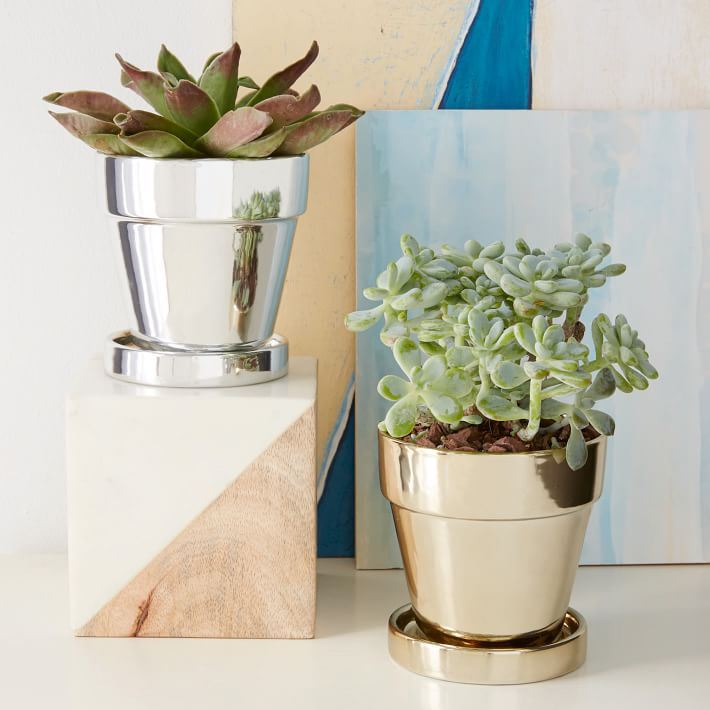 Metallic planters from West Elm