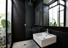 Plants-give-the-contemporary-bathroom-in-black-a-tropical-flavor-217x155