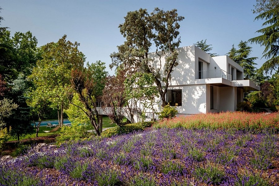 Revamped landscape adds to the beauty of the elegant Spanish home