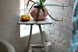 Aloe Vera Simple  12 Creative Ways to Use Plants in The Bathroom Aloe Vera Simple1 270x180