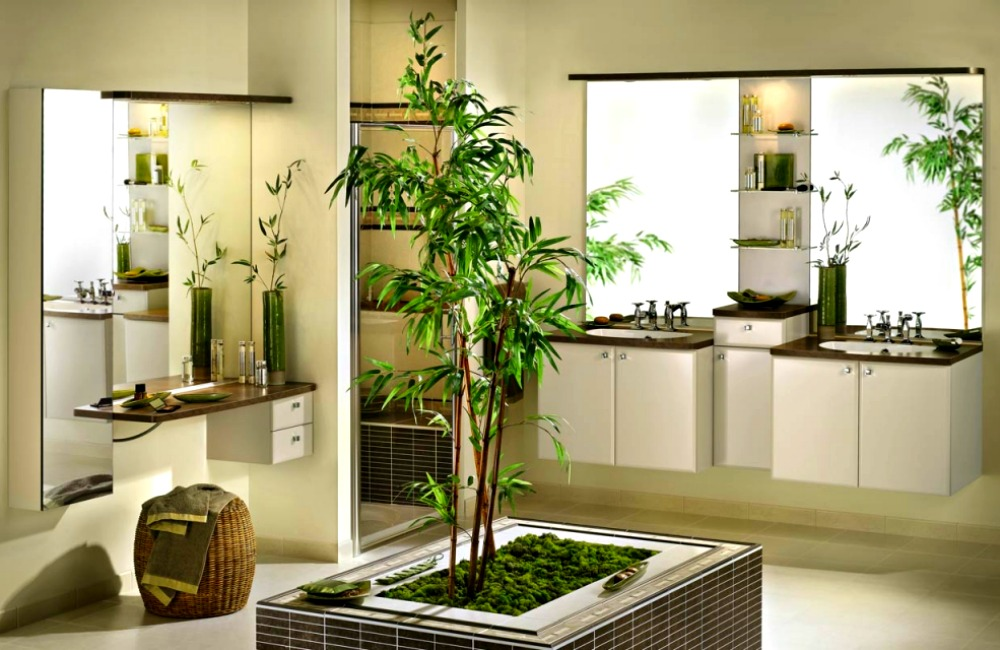 Creative ways to use plants in the bathroom