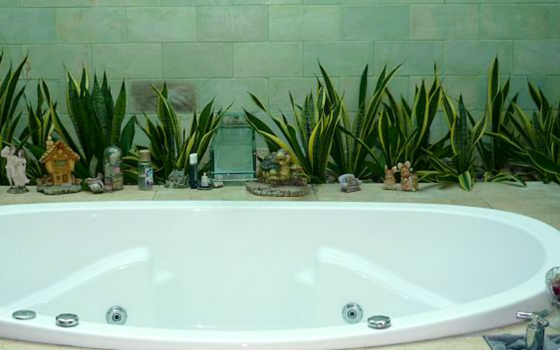 Bathroom Plants Part - 48: View In Gallery Simple Bathtub Ringed With Aloe