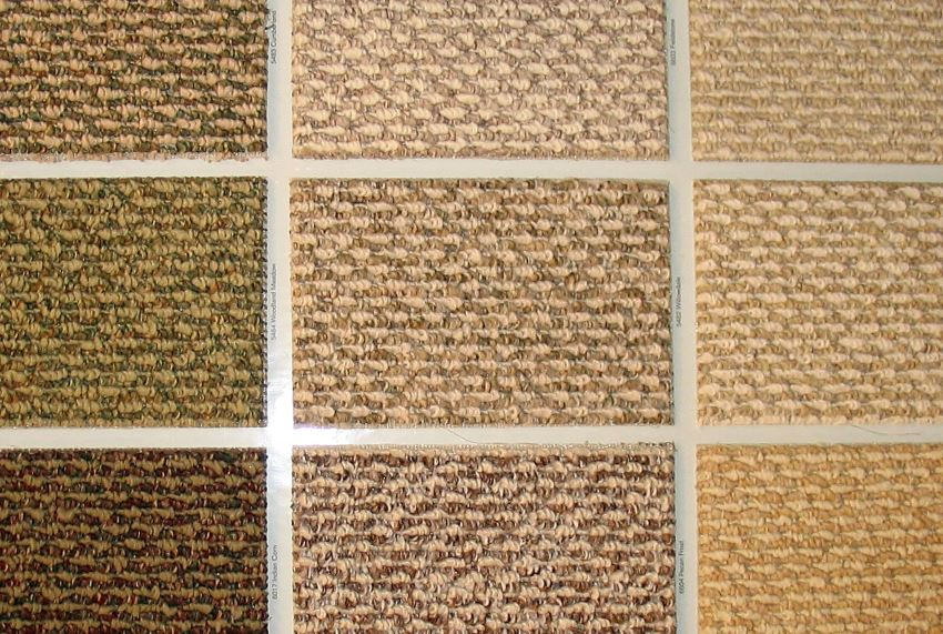 Carpet swatches in neutral tones