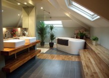 Dashing-bathroom-with-slanted-ceiling-and-skylight-217x155