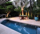 Dramatic lighting in a tropical backyard