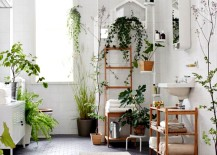 Eclectic Bathroom with natural greenery