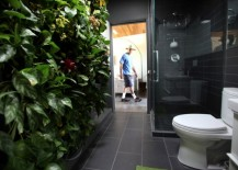 Living Wall Bathroom Ivy