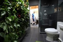 Living Wall Bathroom Ivy  12 Creative Ways to Use Plants in The Bathroom Living Wall Bathroom Ivy 270x180