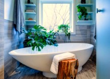 Monstera Two 217x155 12 Creative Ways to Use Plants in the Bathroom