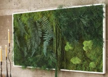 Moss and Fern Living Wall