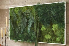 Moss and Fern Living Wall  12 Creative Ways to Use Plants in The Bathroom Moss and Fern Living Wall 270x180