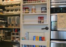 Pantry Door with Spice Rack
