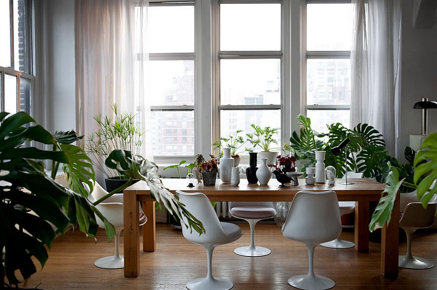 Posh industrial dining room with ample natural greenery