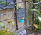 Turquoise hanging planter