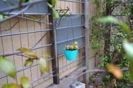 Easy Yard Makeover Ideas for a Fresh Start