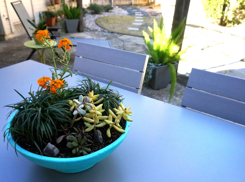 Turquoise planter on a modern outdoor table
