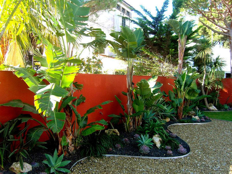 Vibrant red-orange accent wall in a tropical yard