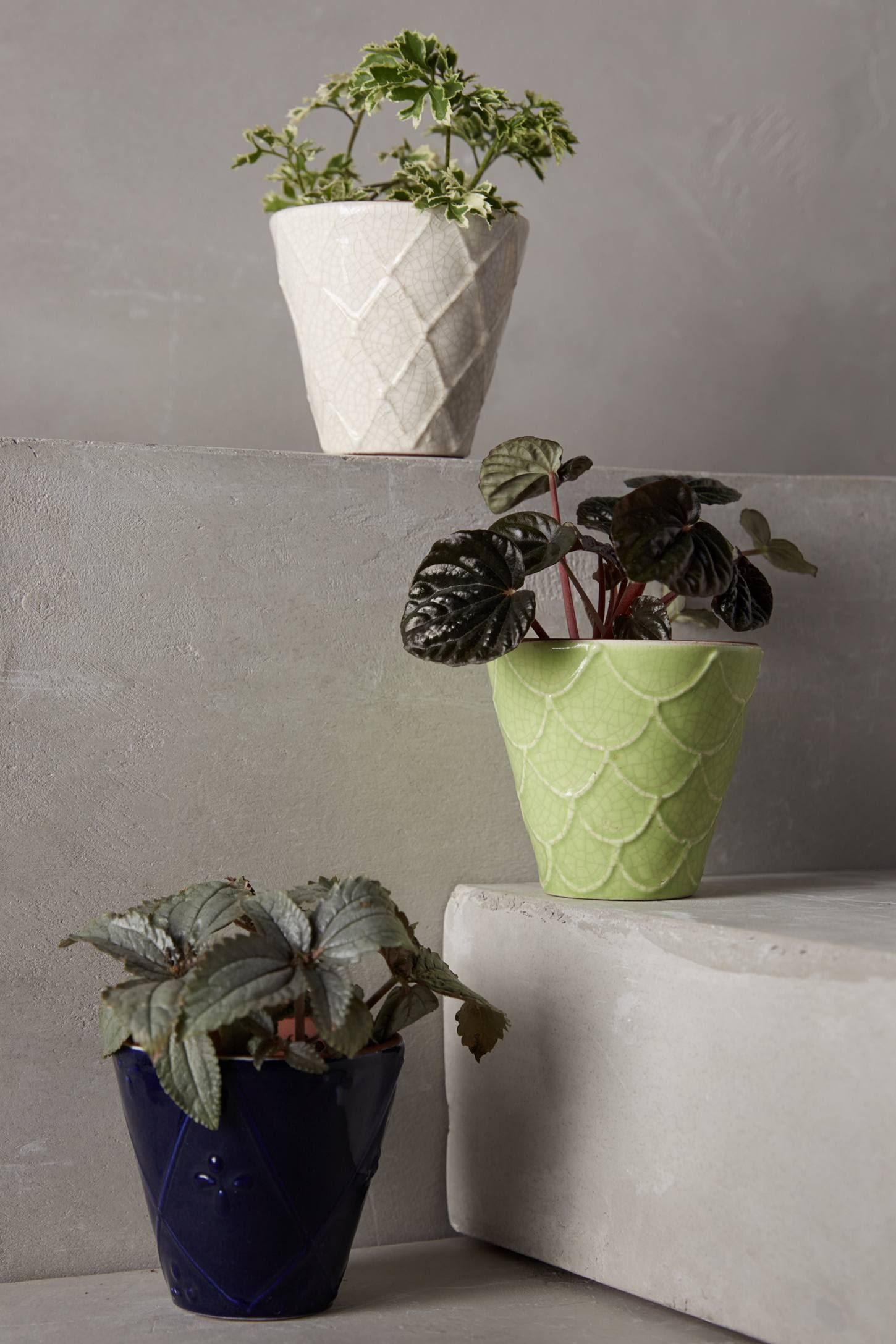 Windowsill pot from Anthropologie