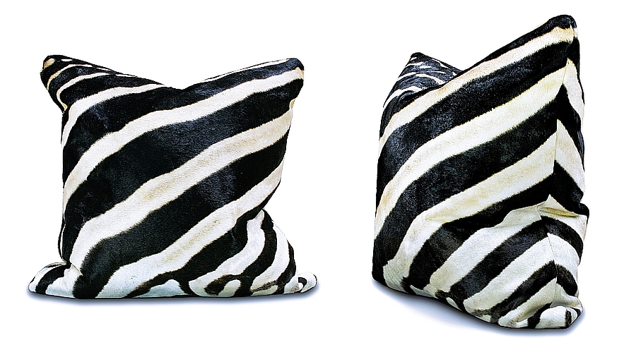 Zebra accent pillows adds style and elegance to any room they adorn