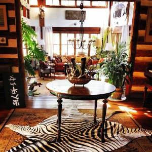 Zebra hide rug gives the room an instant focal point