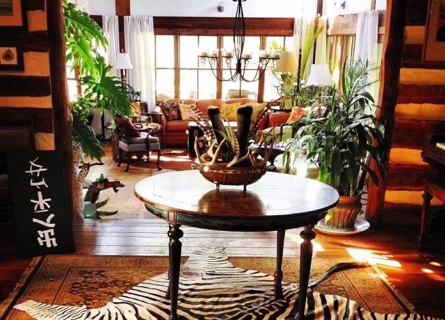 Striped Beauty: Stunning Zebra Rugs & Pillows from Forsyth