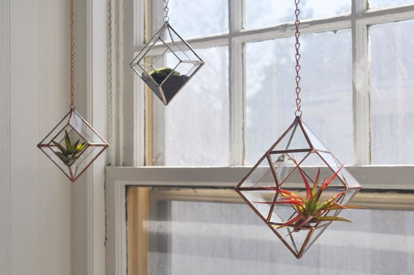 Air plant terrariums from Etsy shop ABJ Glassworks